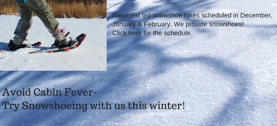 Avoid-Cabin-Fever-Try-Snowshoeing-with