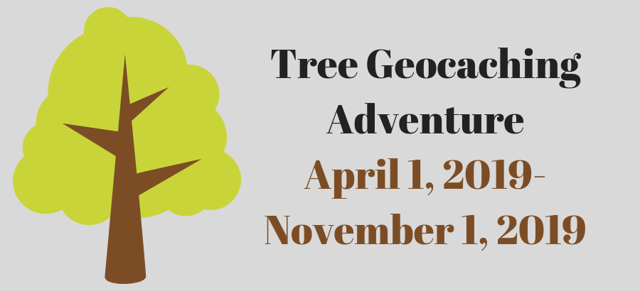 Tree-Geocaching-slider