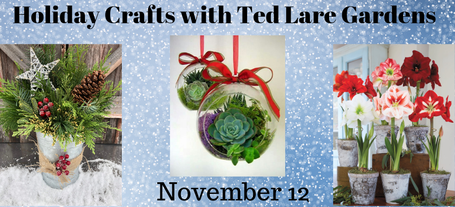 Holiday-Crafts-with-Ted-Lare-Gardens-slider