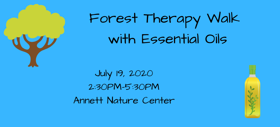 Forest-Therapy-Walk-with-Essential-Oils