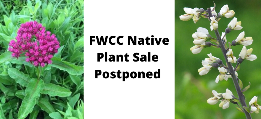 FWCC-Native-Plant-Sale-May-16-2020-8AM-2PM