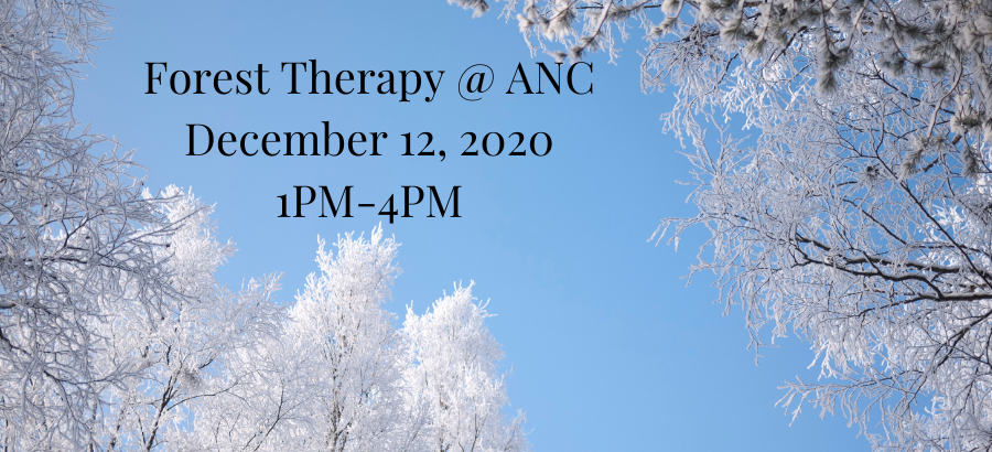 Forest-Therapy-@-ANC-December-12-2020-1PM-4PM