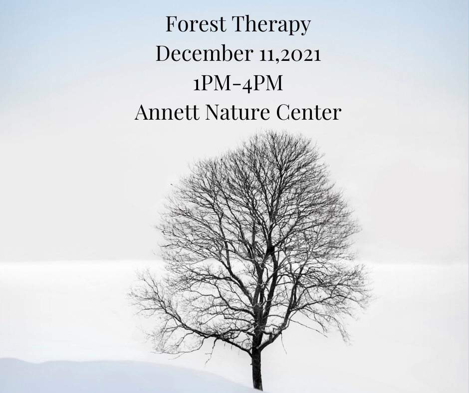 Forest-Nature-Therapy-August-282021-9AM-12PM